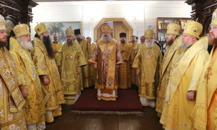 Архиепископ Феодосий поздравил епископа Васильковского Николая с 50-летием