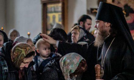 Пандемия готовит Церковь к вхождению в последние времена, – архиепископ Феодосий
