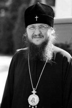 Архиепископ Черкасский и Каневский Феодосий