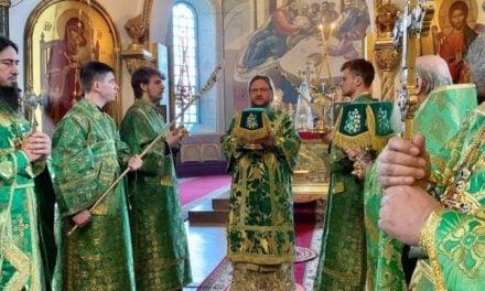 Архієпископ Черкаський і Канівський Феодосій звершив Літургію в свято Входу Господнього в Єрусалим (+ВІДЕО)