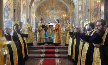 Митрополит Феодосій очолив соборний молебень з нагоди Дня незалежності